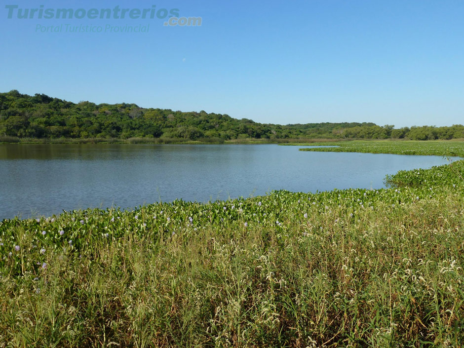 Parque Nacional Pre Delta - Imagen: Turismoentrerios.com